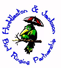 Huddleston & Jackson Bird Ringing Partnership