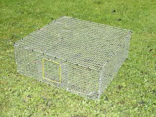 Folding Roost Cage - RC01